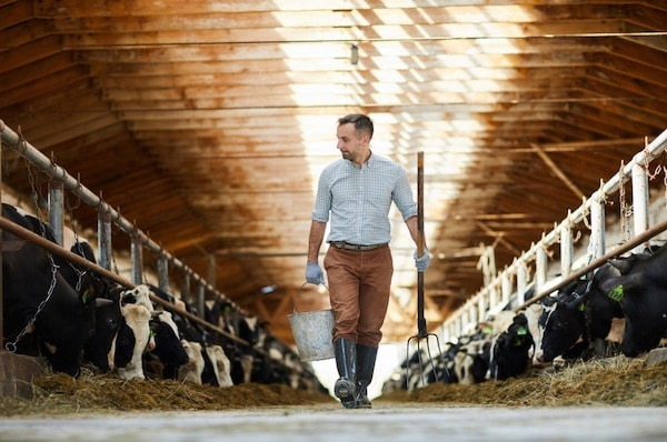 Is The Second Farm Crisis Upon Us?