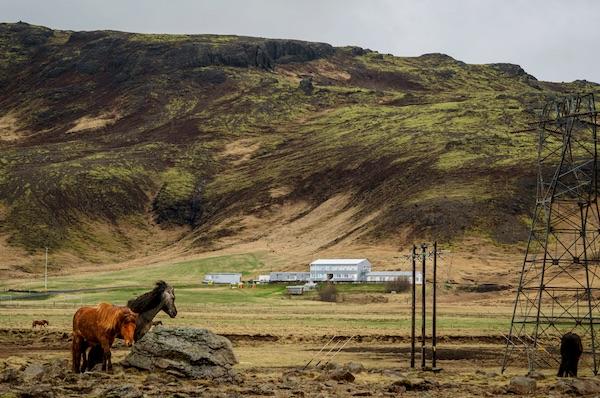 Iceland's Big Bitcoin Heist