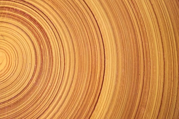 Stronger Than Steel, Able To Stop A Speeding Bullet—It's Super Wood