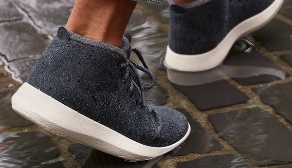 Allbirds, Sustainably Sourced Shoes