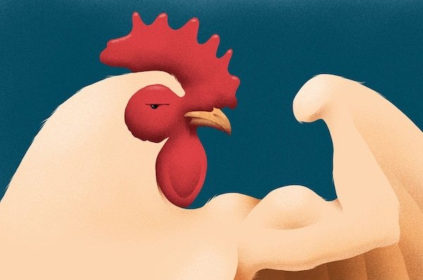 How Chicken Became The Rich World's Most Popular Meat