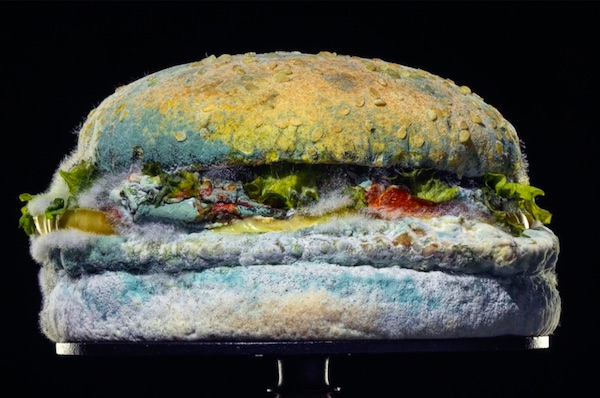 Why Burger King Is Proudly Advertising A Moldy, Disgusting Whopper