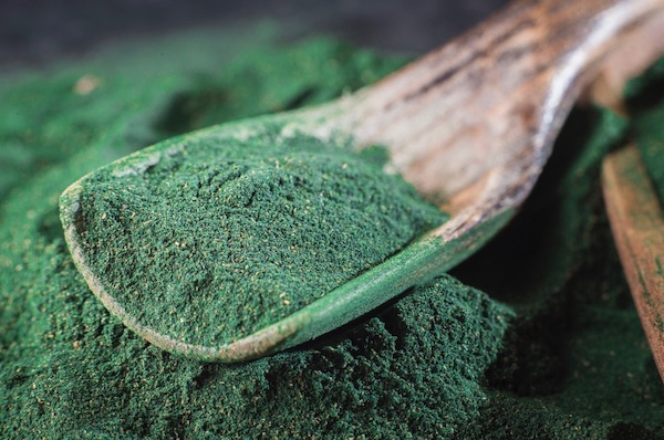 The Green Sludge That Could Transform Our Diets