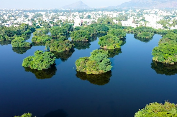 How A Group Of Citizens Revived A British Era Lake In India